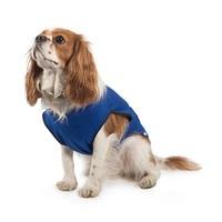 Ancol Pet Cooling Vest